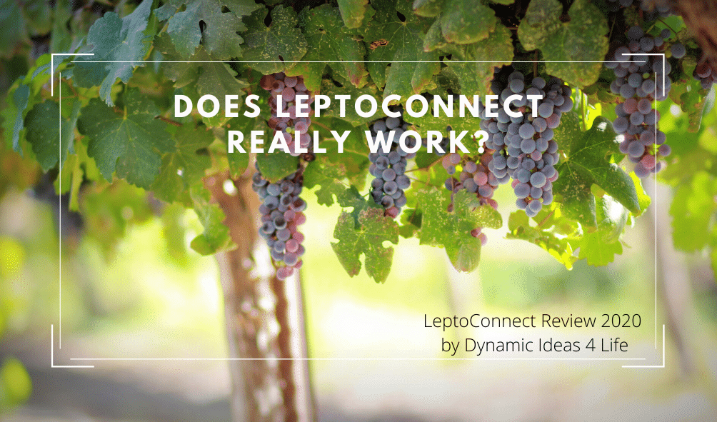 Does LeptoConnect Really work